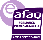 logo e afaq formation professionnelle png